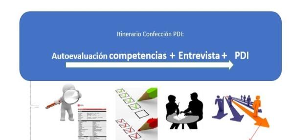 Programa de Desarrollo Individual